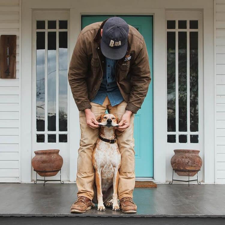 Инстаграм собаки