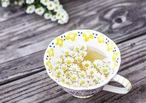 Польза ромашкового чая