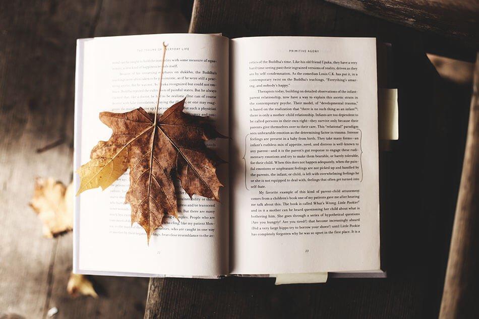 книга осень