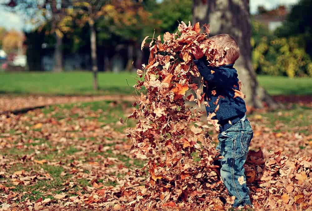 ребенок в осеннних листьях