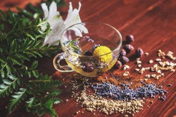 растительные лекарства